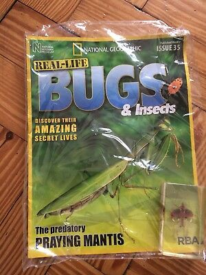 National Geographic Natural History REAL LIFE BUGS and insects ISSUE 35. NEW
