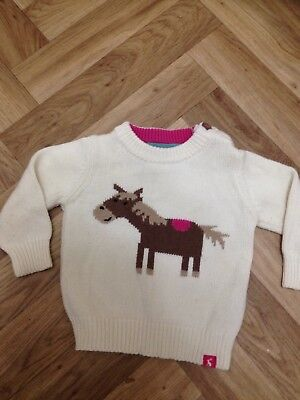 Beautiful Baby Equestrian Jumper 3/6 Months.  Excellent.