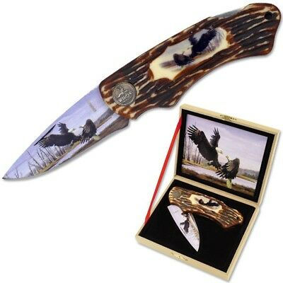 Folding Eagle Pocket Knife With High Quality Wood Display & Syn. Antler Handle