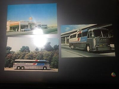 POST CARD-Greyhound Bus's, TN T-21