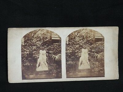 Antique Photography - Stereoscopic Card