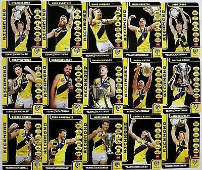 """2018 Limited Teamcoach Richmond """"2017 Tigers Premiership"""" Players Card Set"""