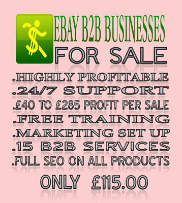B2B BUSINESS FOR SALE (highly profitable) 1 HOURS WORK A DAY