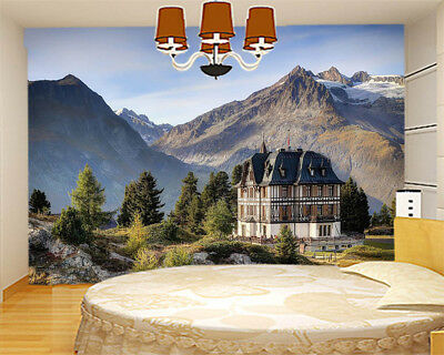 Snow And Ice Melting 3D Full Wall Mural Photo Wallpaper Printing Home Kids Decor