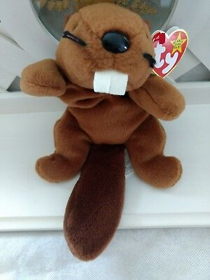 TY Beanie Baby ~ BUCKY Beaver ~ NWT Retired with PVC Pellets Canadian Tush Tag