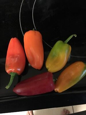 30 Mini Sweet Pepper Seeds