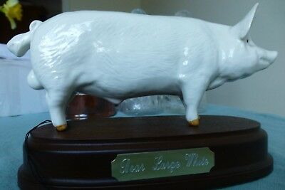 Beswick Large White Boar (Pig), still in box.