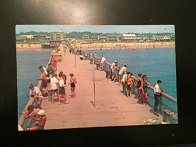 Vintage Postcard Myrtle Beach South Carolina Fishing Pier Rodeo 1966