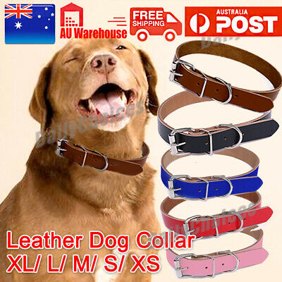 Leather Dog Collar Sewn High Quality Full Buckle SIZES XS - XXL