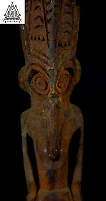 Stunning Fine Siassi Ceremonial Carved Spoon, Sepik, Papua New Guinea, PNG