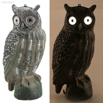 C513 Solar Energy Owl Decoy Decor Crops From Creative Hunting Decoy