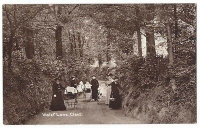 CLENT Violet Lane, Worcestershire, RP Postcard by Price, Postally Used 1914