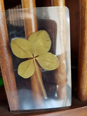 Real Genuine Four Leaf Clover, Wallet, Lucky, Lamanated, Luck, 1st Birthday