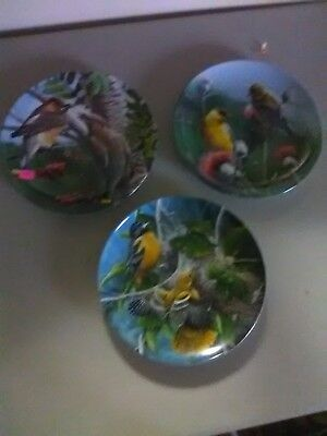 3 Collector Plates - Birds of Your Garden Collection - Knowles - Kevin Daniel