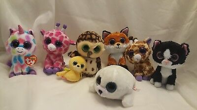 8 Piece Ty Beanie Boo Lot Tusk Twigs Pepper Icy Safari Slick Wishful Sammy. 6eddccc8d0d9