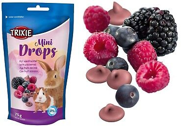 Mini Fruit Drops with Wild Berries Small Animal Hamster Guinea Pig Rabbit 75g