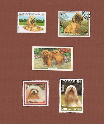 Lhasa Apso dog postage stamps and trade card, set of 5