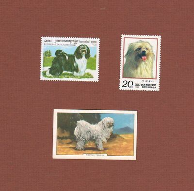 Tibetan Terrier dog postage stamps and card set of 3