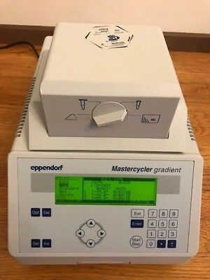 Eppendorf Mastercycler Gradient Thermal Cycler 5331