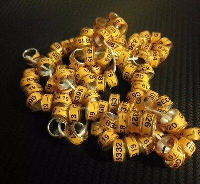 10 x GB 2019-10 mm pigeon rings bands,show racers,barbs,Volga and other.