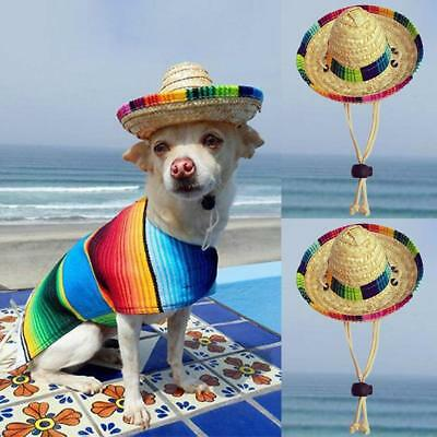 New Mini Pet Dogs Sombrero Sun Hat Beach Party Straw Hats Dogs Mexican Style Hat
