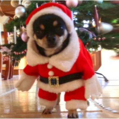 USA Pet Christmas Sweater Warm Hoodies Puppy Clothes Xmas Costume For Dogs Cats