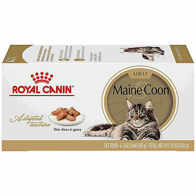 Royal Canin Feline Breed Nutrition Maine Coon Thin Slices In Gravy Wet Cat Food,
