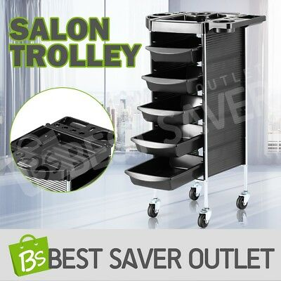 6 Tier Salon Trolley Beauty Spa Hair Coloring Hairdressing Rolling Storage Cart