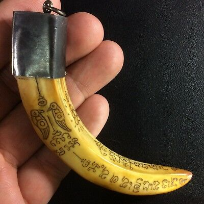Magic TIGER Carved Real Wild BOAR Pig Tooth Hog Amulet Powerful Talisman Pendant