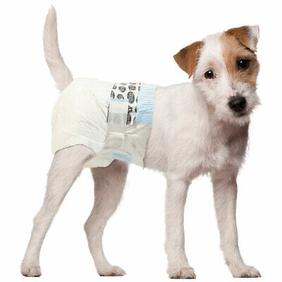 Simple Solution Disposable dog diaper x 2 - sample  - 5 sizes