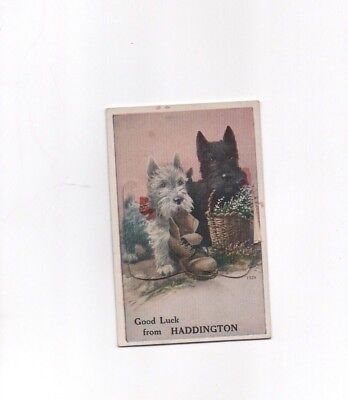 Valentine's Mailing Postcard Novelty Good Luck from Haddington Post Card Scenic