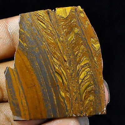 110.30 Cts Natural african golden blue iron tiger eye facet slice rough specime