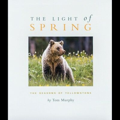 THE LIGHT OF SPRING-YELLOWSTONE PARK PHOTO BOOK SIGNED BY TOM MURPHY: 2nd ED.