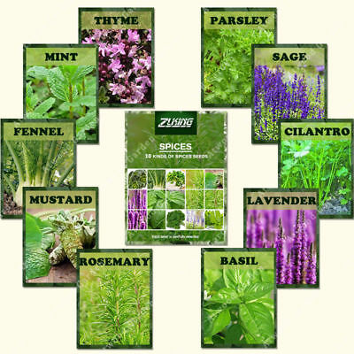 1100pcs Rare Spice Combo Mix Seeds Viable Medical Plants Herb Vegetable Seeds
