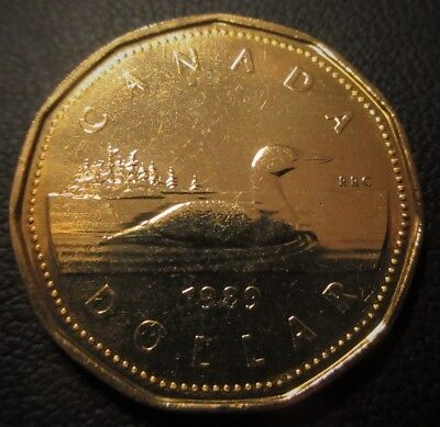 1989 $1 Dollar Loon - Uncirculated Loonie Mint State Business Strike from Roll