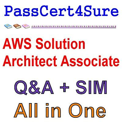 AWS Certified Solutions Architect - Associate SAA-C01 Exam Q&A+SIM