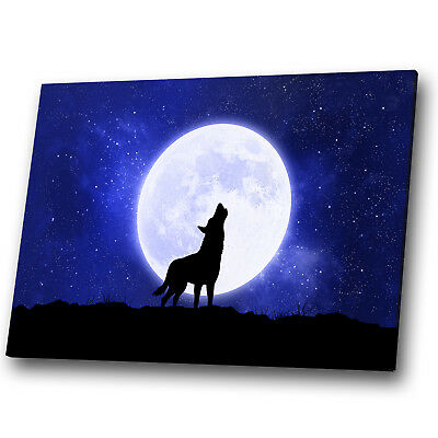 A927 Wolf Black Blue White Grey Funky Animal Canvas Wall Art Large Picture Print