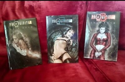 The complete 'PROHIBITED' series of hardback books by Luis Royo. Adult/Erotica.