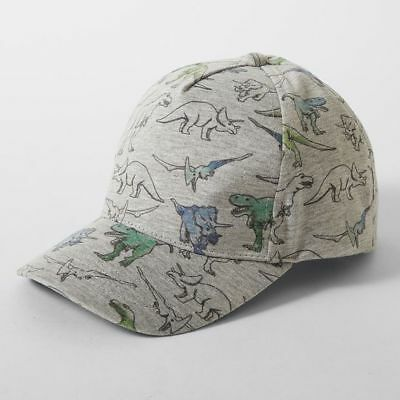 NEW Dinosaur Peak Cap Kids