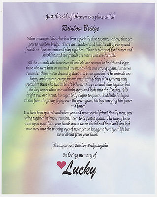 photograph about Rainbow Bridge Poem for Dogs Printable titled 100+ EPIC Excellent Rainbow Bridge Poem Visualize Body - Zachary