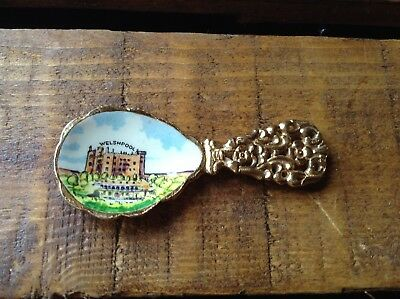 Enamel picture tea caddy spoon
