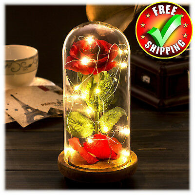 Rose Gift Box LED Beauty And The Beasts Enchanted Glass Dome Wedding Home Office