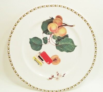 """New (Old Stock) Queen's Fine Bone China Hookers Fruit Dinner Plate Peach 11"""""""
