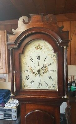 A pretty little Oak Antique Norfolk/Suffolk Longcase Grandfather Clock C1790