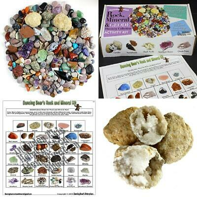 Dancing Bear Rock & Mineral Collection Activity Kit (Over 150 Pcs),...