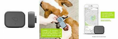 Whistle Go/Health & Location Tracker for Pets Grey