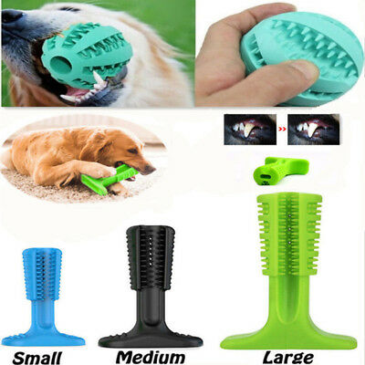 Brushing Stick Pets Toothbrush For Dogs Oralcare Most Effective Bite Chew Toys