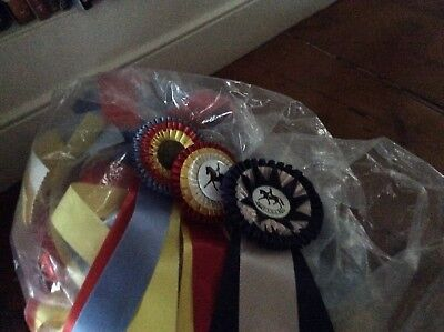 Lot Of Horse Show Ribbons