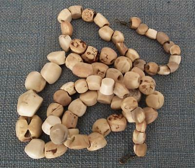 Antique Pre-Columbian Tairona Shell Beads Necklace 500-1500 AD.