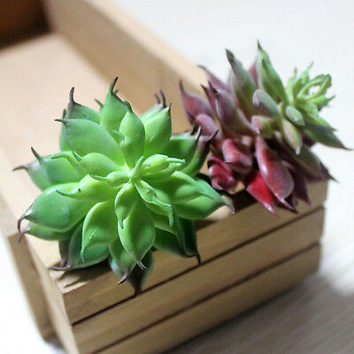 Land Lotus Succulent Grass Desert Artificial Plant Fake Flower Garden Decor LJ